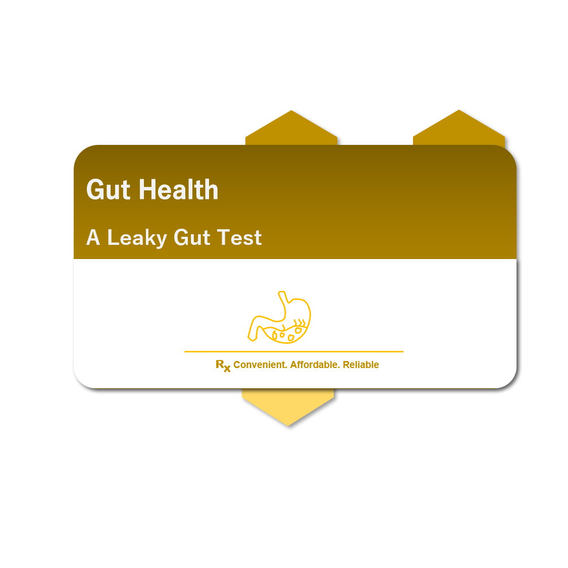 Gut Health Test