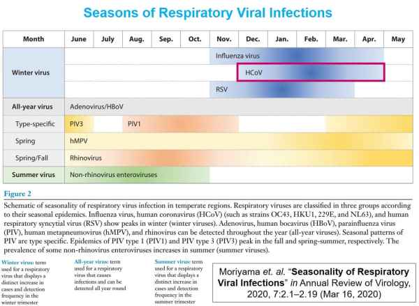Seasons for respiratory virus infections